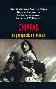 chipas_en_perspectiva
