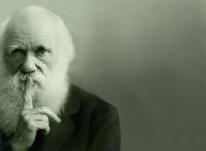 Darwin, Marx y El Capital