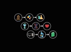 Cómo la evolución configura nuestras vidas